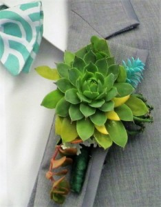 All Succulent Boutonniere