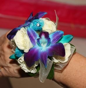 Elegant Blue Orchids