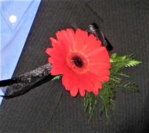 Red Gerber Daisy with Ribbon